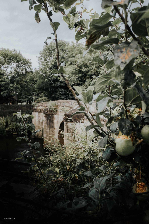 Darley Bridge & Apples