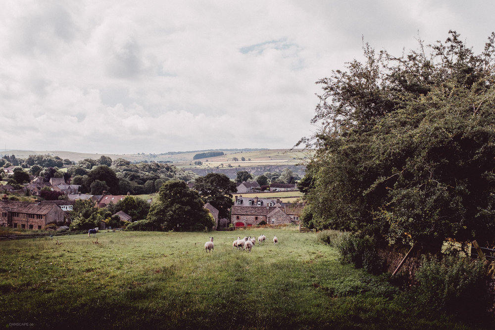 Disturbing the sheep on the last field before entering Eyam