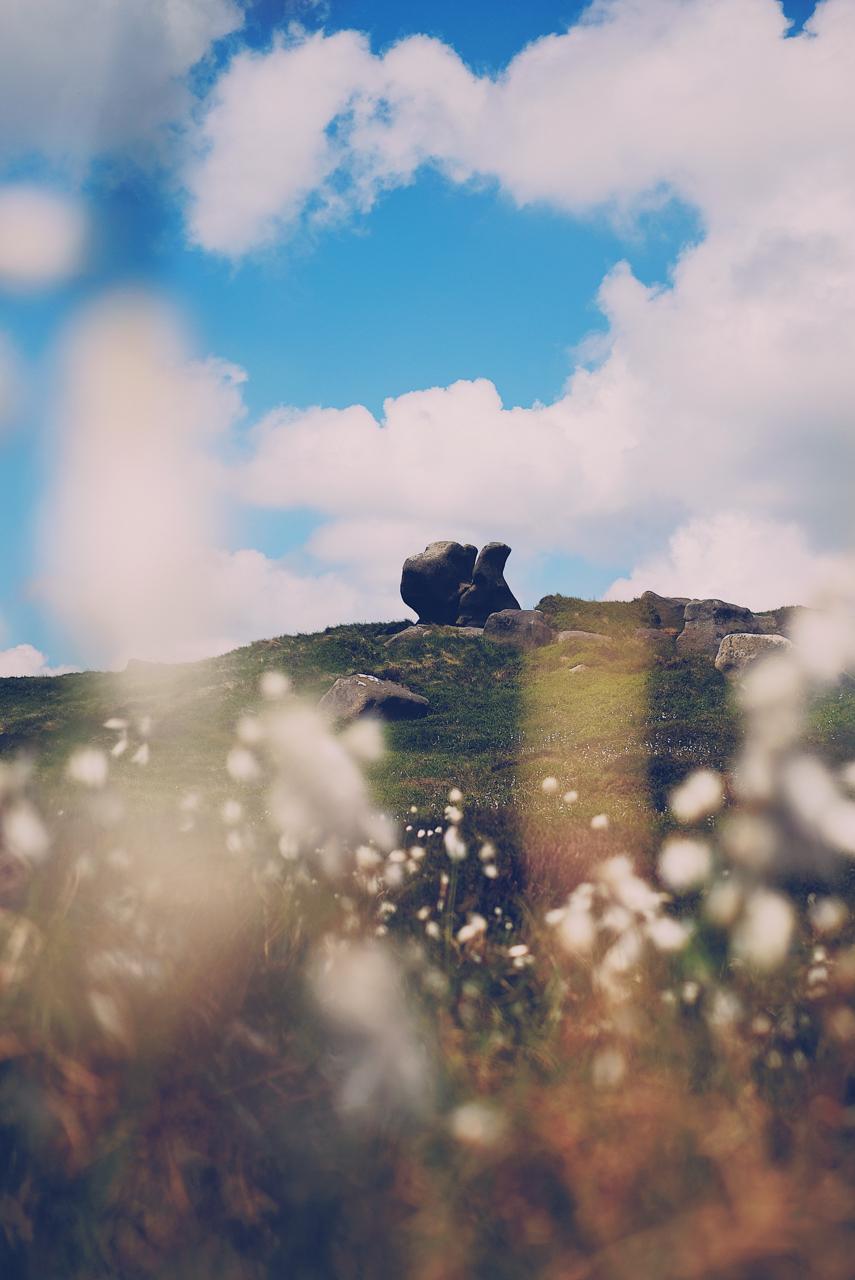 Gritstone Rocks