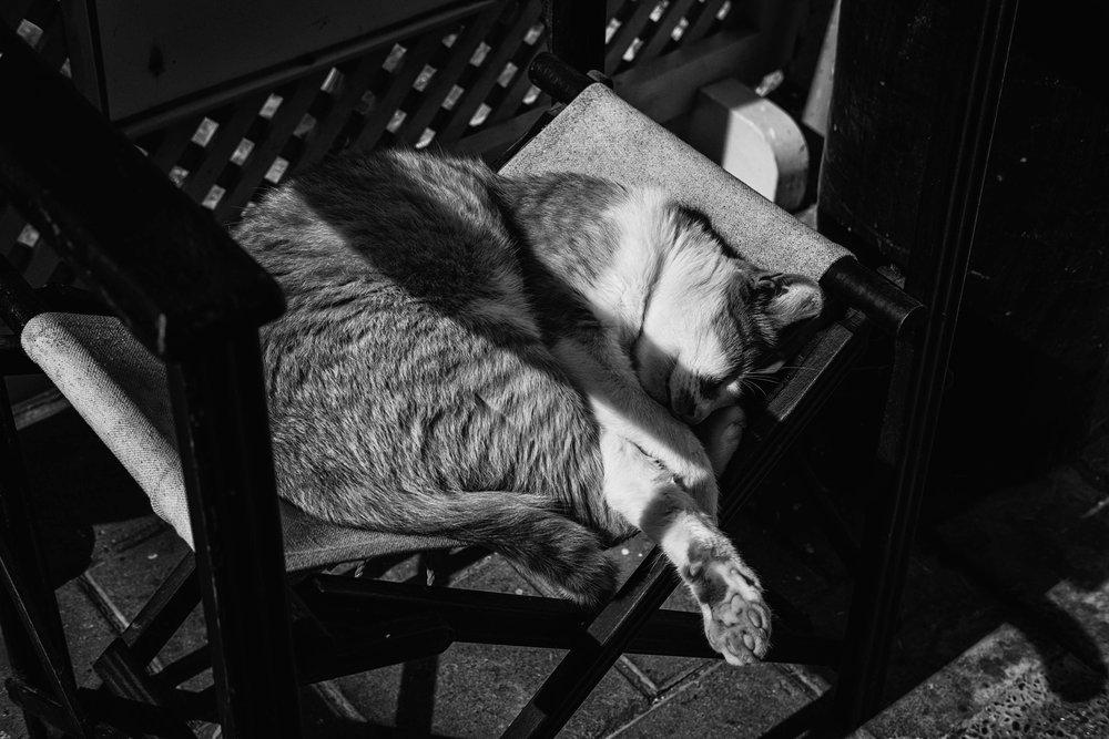 Jane Zhang - Essaouria Street Photography-20-2.jpg