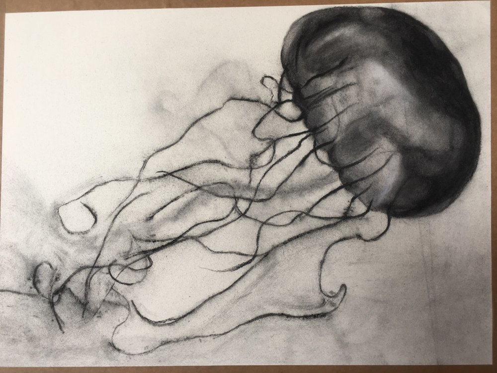 My charcoal jellyfish! I imbued string with charcoal powder and dropped it onto the paper to make the tentacles!