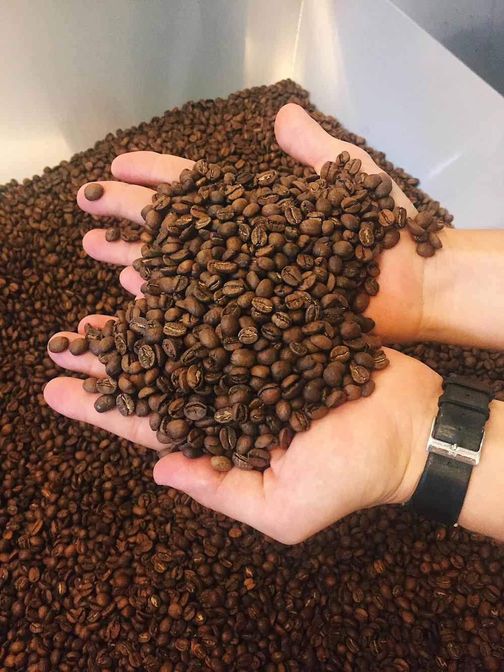 Færdigristede kaffebønner.