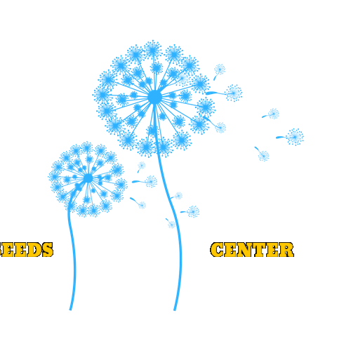 Seeds Center (formerly Learn More, Live More)