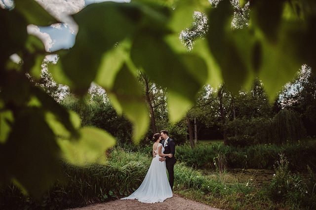 Remember when the trees still had leaves?  #weddedwonderland #engagementshoot #loveauthentic #weddingphotography #engaged #bohobride #indiebride #loveandwildhearts #weddingphotomag