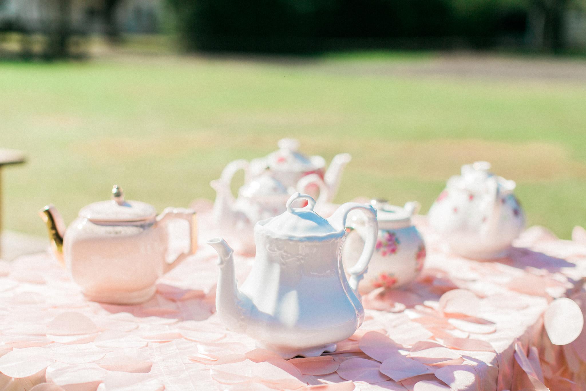 Tampa Tea Party Rentals