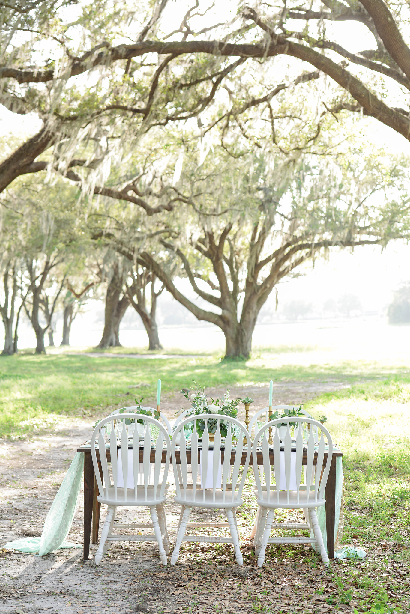 Tampa Wedding Designer