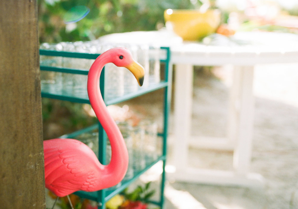 Tropical Flamingo Beach Wedding
