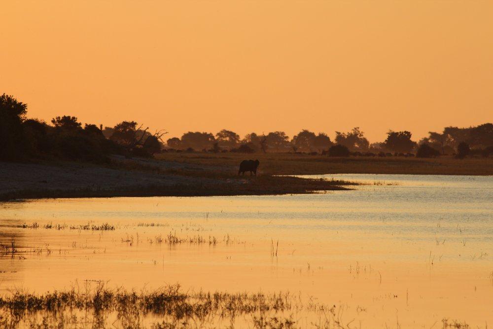 Botswana 2012 (343).jpg