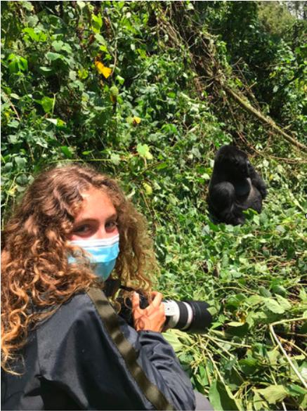 Trekking for gorillas in Virunga, DR Congo, August 2017