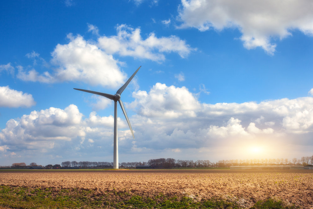 wind wheat.jpg