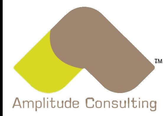 Amplitude Consulting