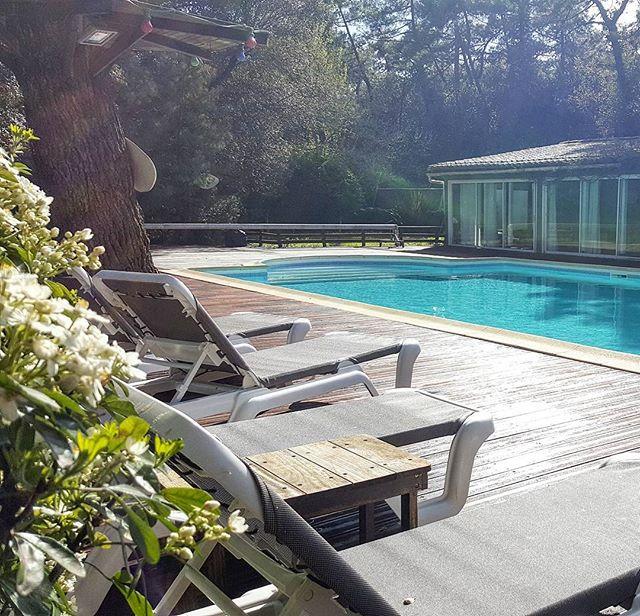 Le bois saint Martin est prêt  pour vous accueillir pour cette nouvelle saison 2017 #iledere #vacances #charentemaritime #sun #fun #famille #piscine #soleil #barbecue #spa #sauna #ilederetourisme #irl #pic #saintmartinderé #picoftheday #perfectmoment  à bientôt!
