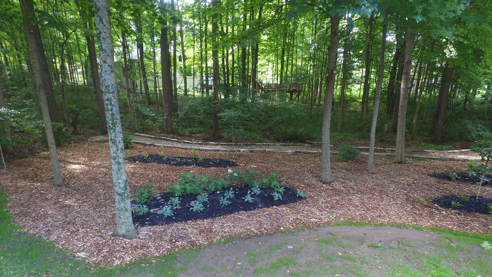Barnhart Plantings