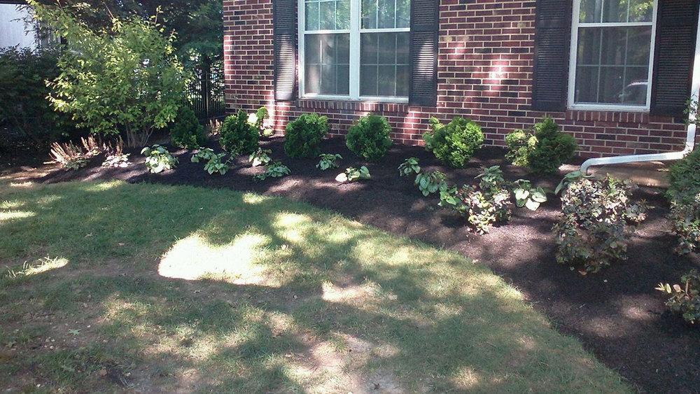 Lehman Front Landscape Planting