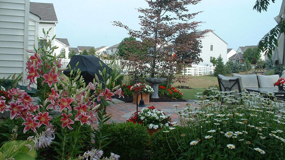 Horsefield Flowers