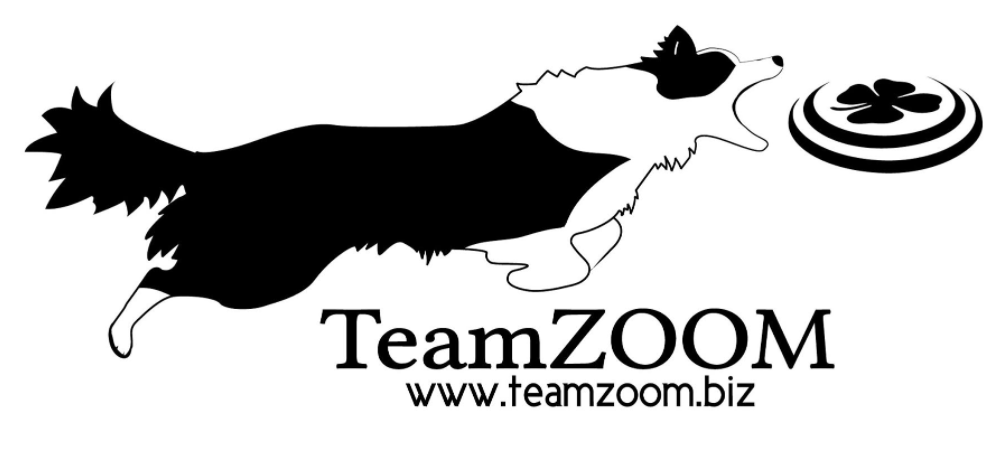 TeamZOOM Canine Entertainment