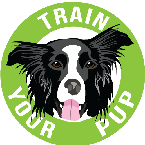 Train Your Pup Canine Enrichment Center