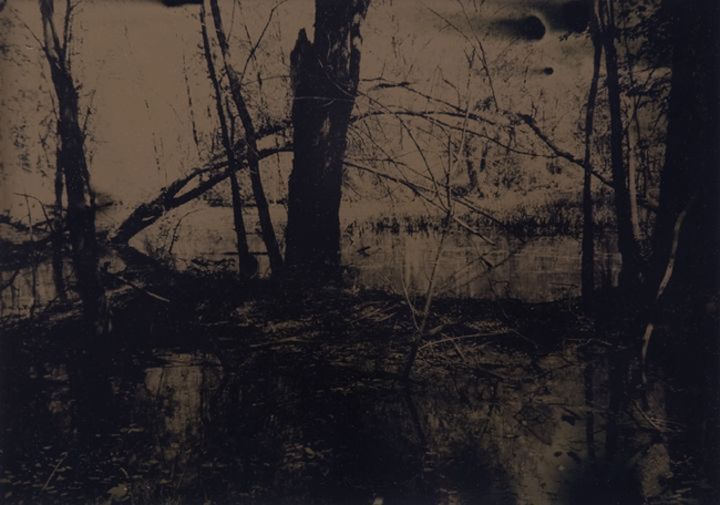 """Wetlands 3 revisited"" tintype 12"" x 15"""