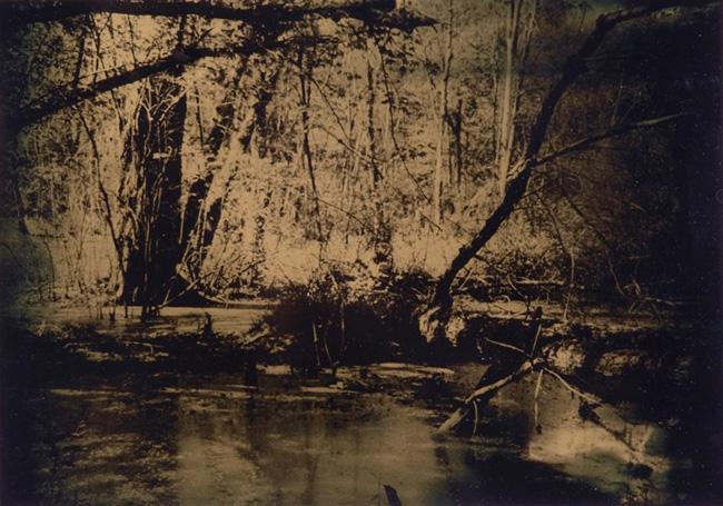 """""""Wetlands 1"""" tintype 12"""" x 15"""""""