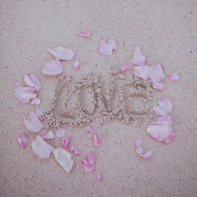 🐚 L💗VE  Happy Valentine's Day  #museroom #kailua