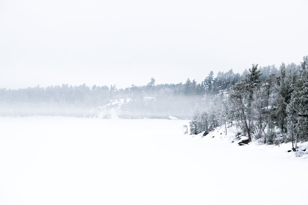 Winter2018-4.jpg