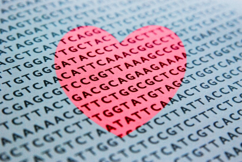 dna-and-love.jpg