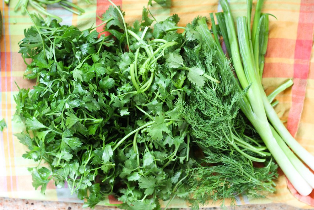Cilantro, dill, parsley, green onion
