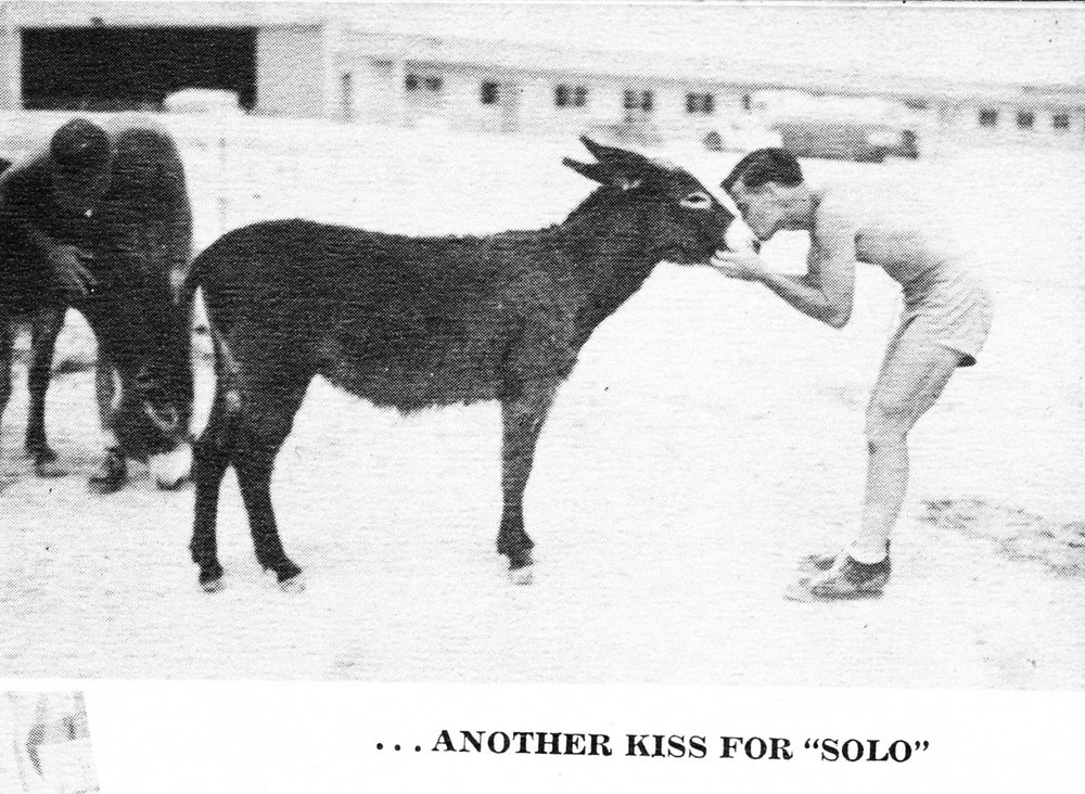 Whenever a cadet completed his first solo flight, he had to kiss the real Solo mascot kept at the air base.