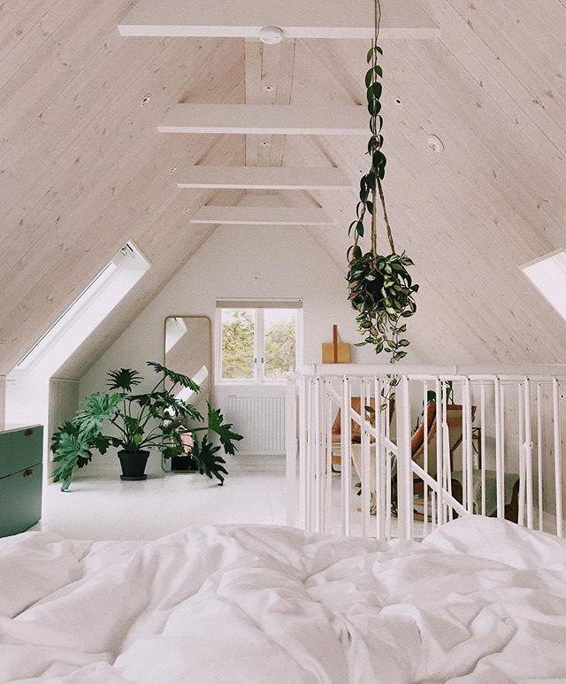 att vakna här! &här stannar jag + katterna tills stockholm kallar igen. ps. längtar till att skogen utanför fönstret skiftar färg från grönt till rött 🍂