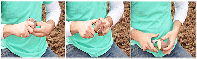 Oklahoma Oklahoma City, Oklahoma OKC garden supplies OKC nursery OKC tree farm trees for sale custom garden services garden decor landscape design landscape instillation seasonal plant maintainence custom pot planting custom garden care garden design landscape delivery in-season plants Oklahoma Red Bud Autumn Blaze Maple Heritage River Birch bald cypress chinese pistache urbanite ash tree planting guide plant watering guide tree inventory garden tips flowers seasonal flowers shrubs plant chemicals plant fertilizers plant mulch garden vegetables annuals perennials