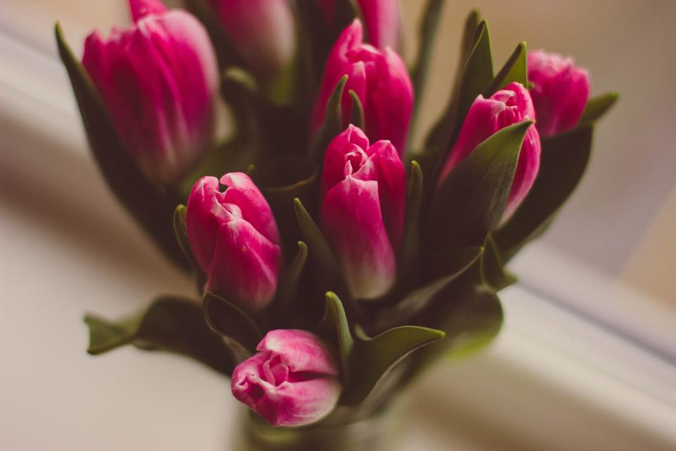 MOTHER'S DAY MENU - 31/03/2019 | Two course menu and a glass of prosecco per person for £16.95