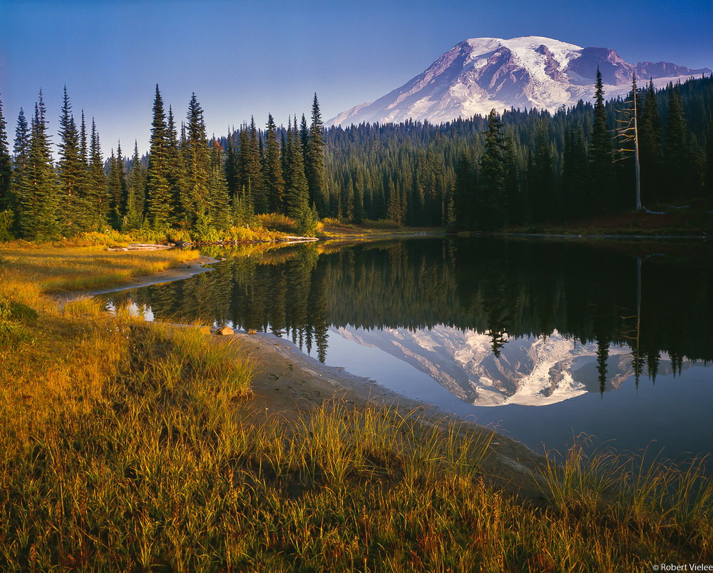 Mt Rainier, Morning Light