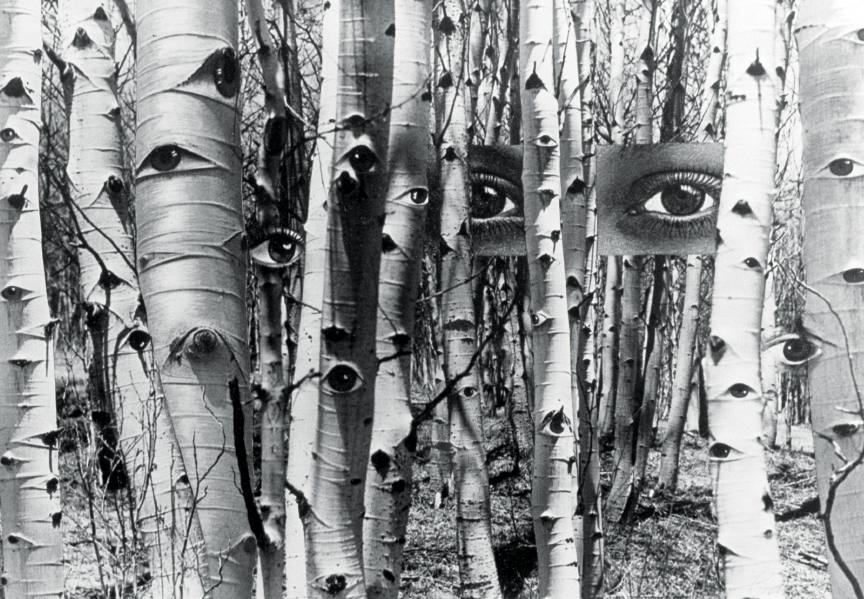 Herbert Bayer, In Search of Times Past , 1959