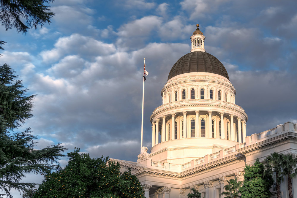 Action Under the Capitol Dome - LEGISLATIVE UPDATE