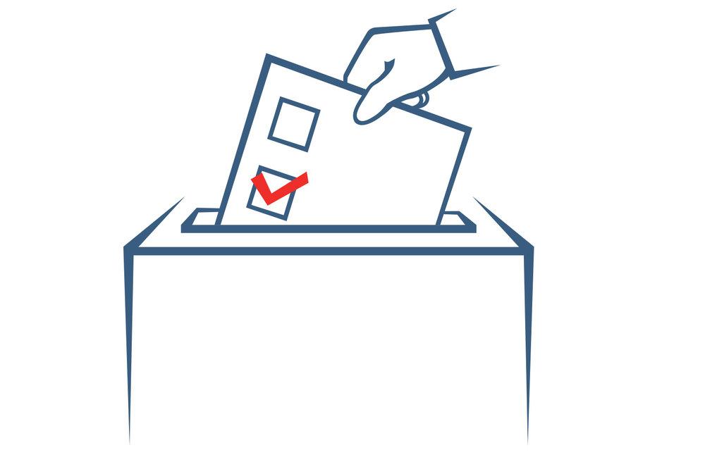 Vote-Voice.jpg