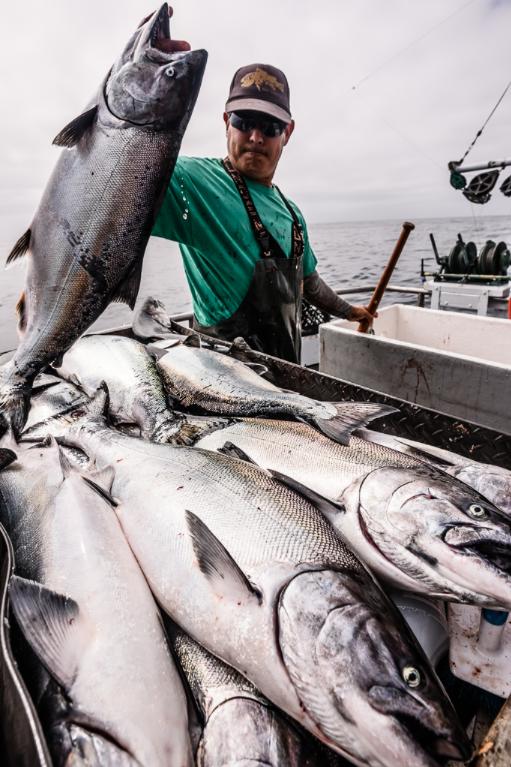 Santa Cruz fisherman,  David Toriumi , King salmon fishing in May. (Photo credit: David Hills - Fishy Photos)