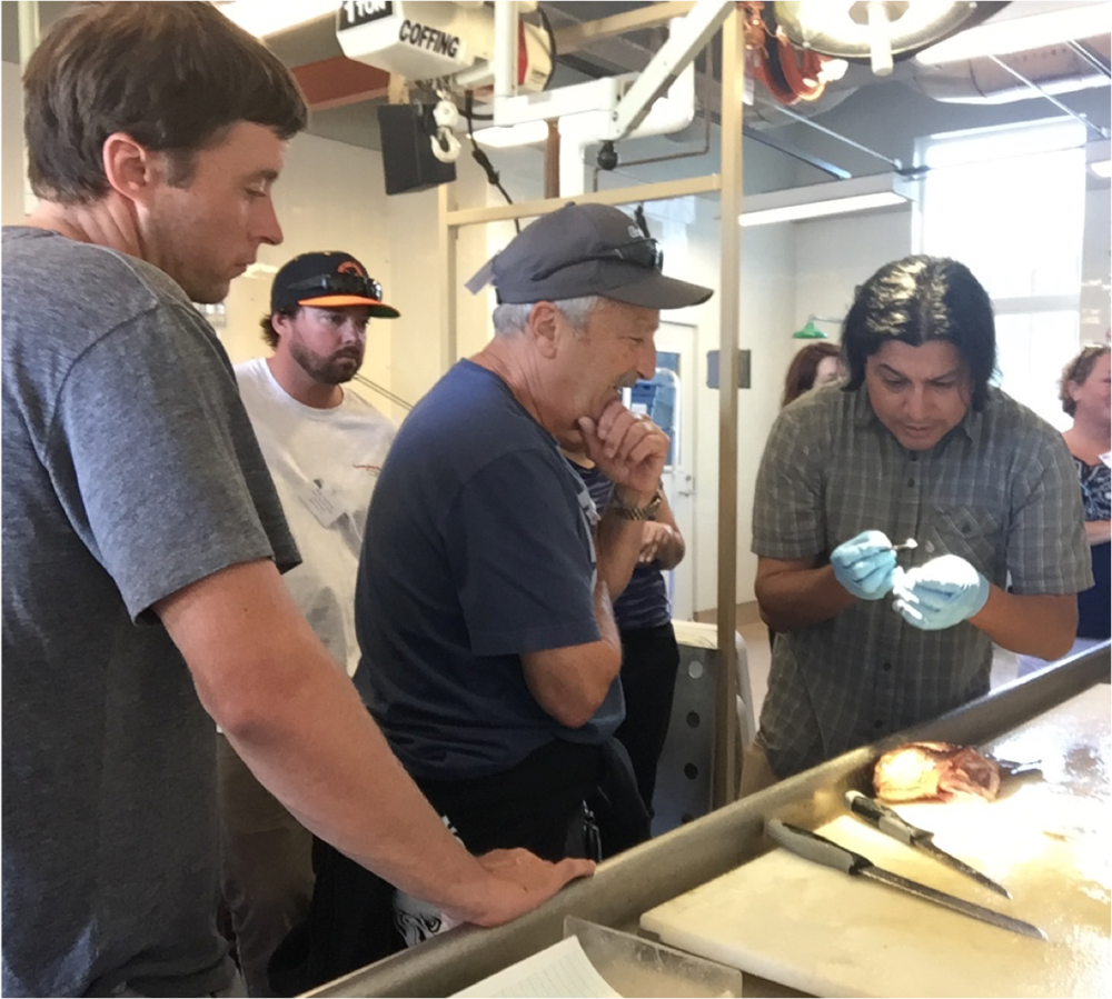 Troy Dooley and others watch on as Carlos Garza demonstrates methodologies for stock identification and population structure in the genetics lab.