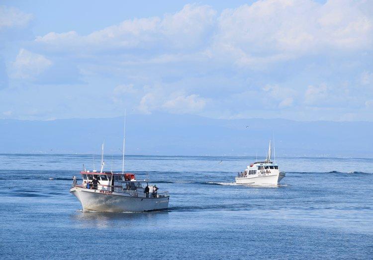 In The Press — Monterey Bay Fisheries Trust