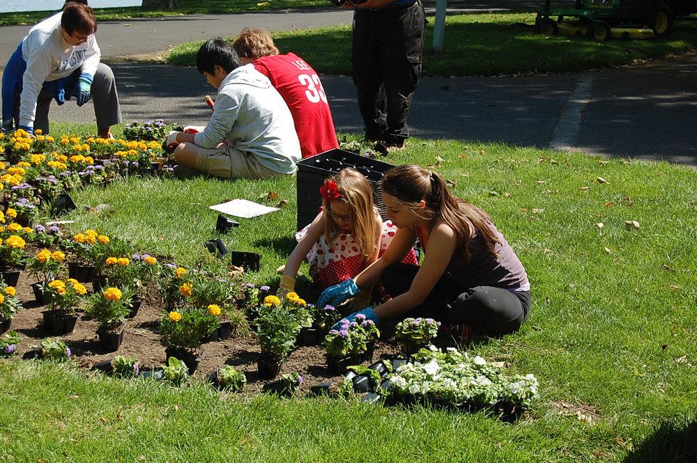 Volunteers planting flowers