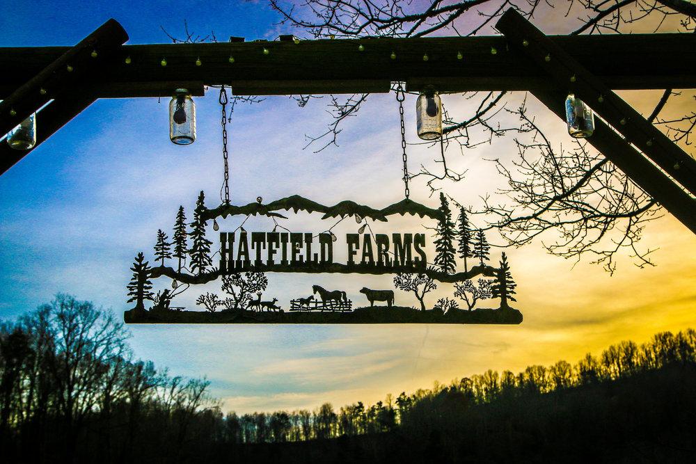 Hatfield Farms