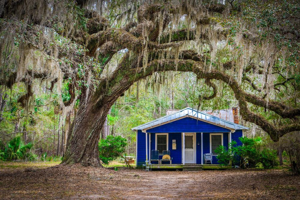Daufuskie House Under a Massive Oak Tree