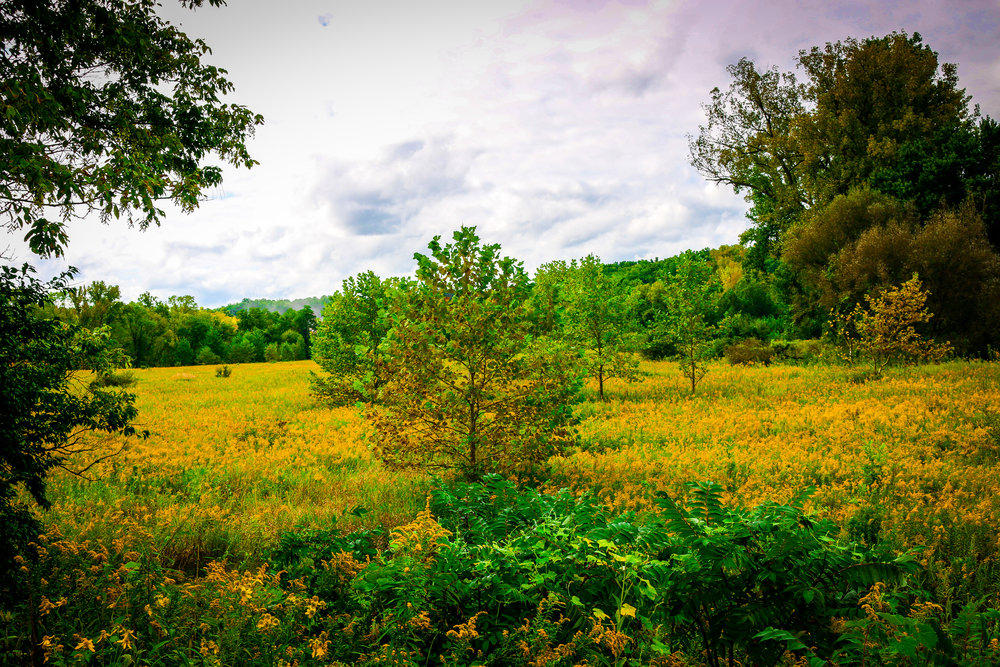 Cloudy but Beautiful Cuyahoga Valley