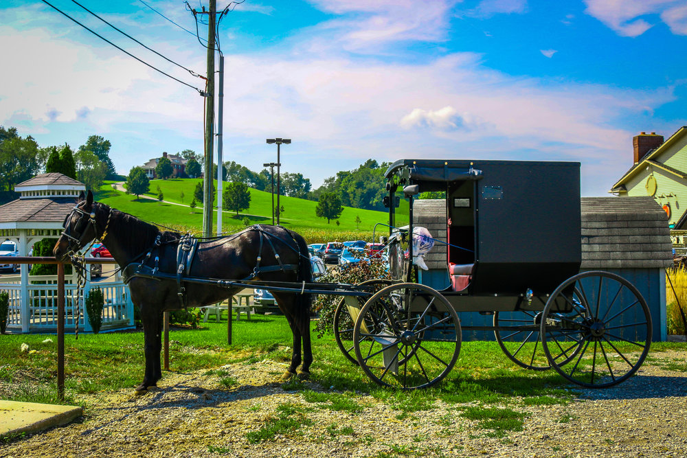 Amish Country Ohio