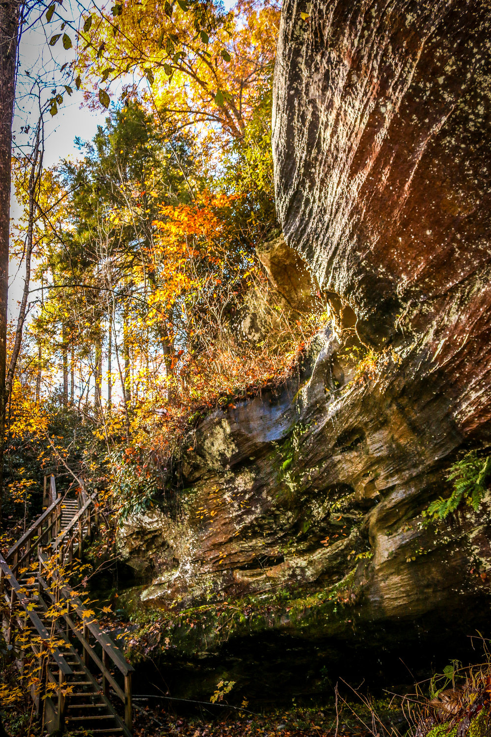 Red River Gorge Daniel Boone National Forest Kentucky KY