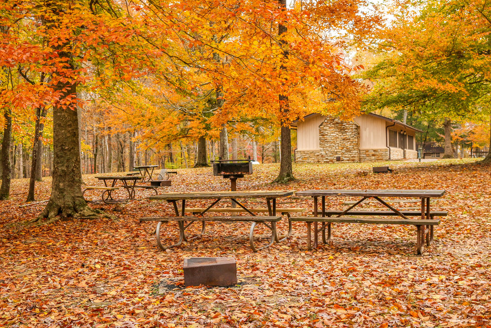 mammoth cave picnic area kentucky national park