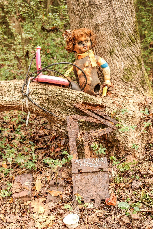 Atlanta Doll's Head Trail Constitution Lakes Georgia
