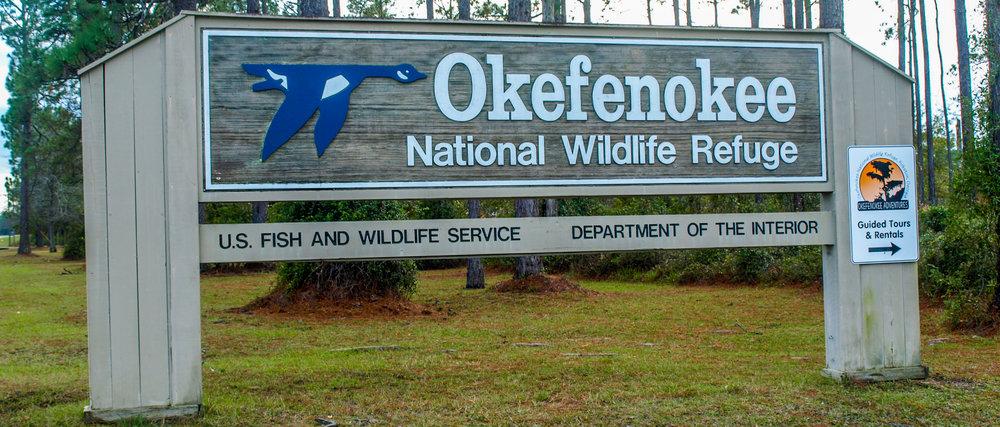 Okefenokee National Wildlife Refuge Swamp Georgia GA