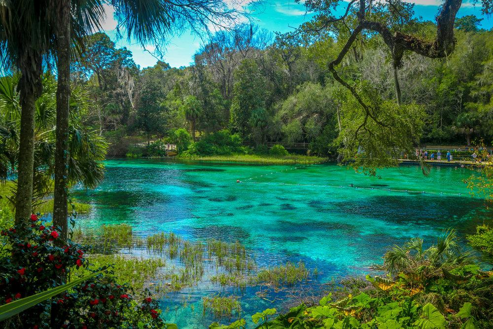 rainbow spring state park florida fl
