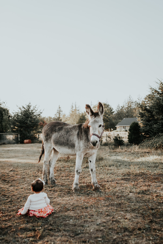 Oregon Coast Family Photographer (21).jpg