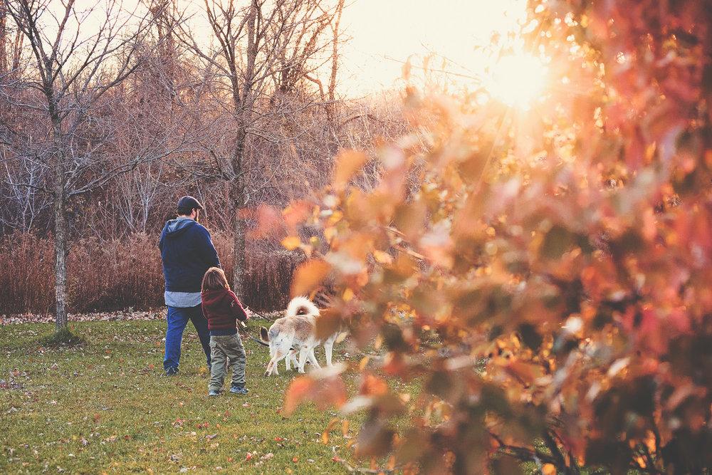 Fall family documentary photography